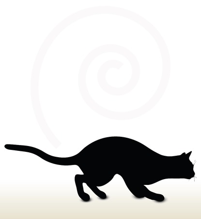 stalking: illustration of cat silhouette isolated on white background - in stalking pose