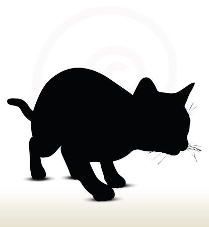 silhouette chat: illustration de cat silhouette isolé sur fond blanc - dans la traque pose