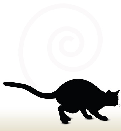 back lit: illustration of cat silhouette isolated on white background - in stalking pose
