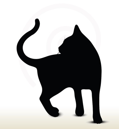 silueta de gato: Ilustración de la silueta de gato aislado en el fondo blanco - a su vez-en torno a pose