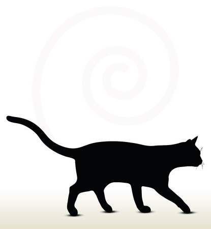 illustration of cat silhouette isolated on white background - in walking pose