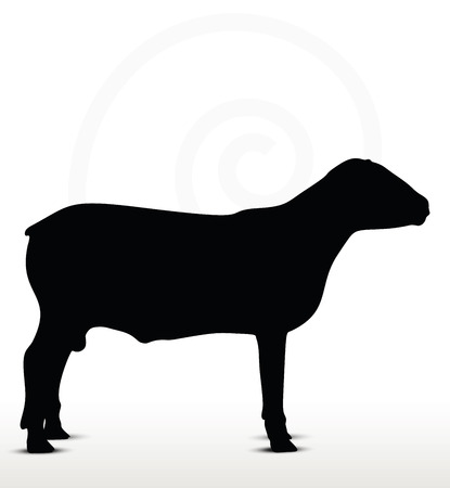 inactive: sheep silhouette with standing still pose isolated on white background