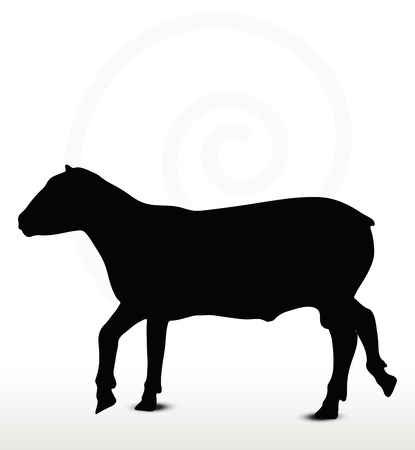 sheep silhouette with trot pose isolated on white background
