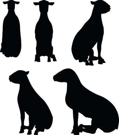 sitter: sheep silhouettes with sitting pose isolated on white background