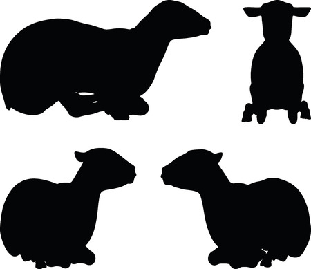 lay out: sheep silhouettes with laying pose isolated on white background