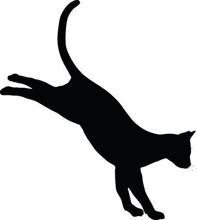 silueta gato: Imagen vectorial - gato silueta aislados sobre fondo blanco