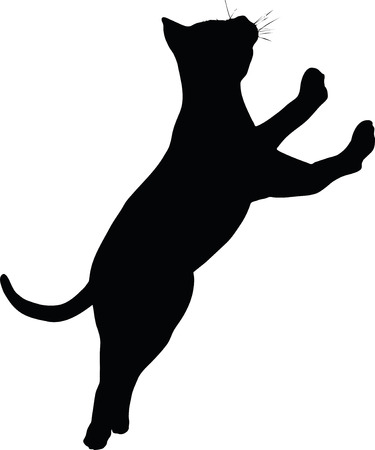 Vector Image - cat silhouette isolated on white background Vectores