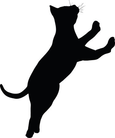 Vector afbeelding - Kat silhouet geïsoleerd op een witte achtergrond Stock Illustratie