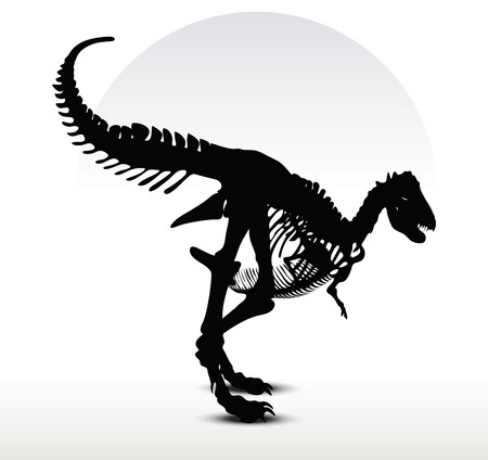 ベクトル画像 - 恐竜 trex スケルトン ホワイト バック グラウンドの分離