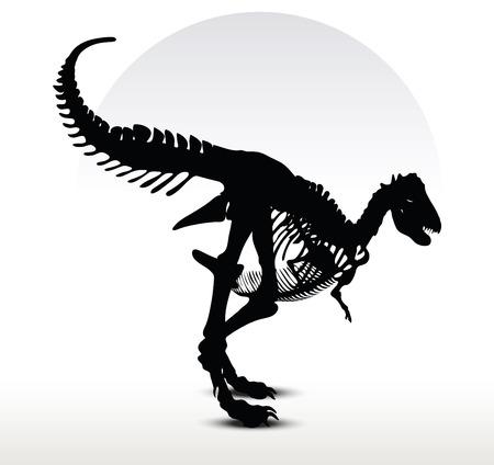 Vector Image - dinosaurs trex skeleton isolated on white background