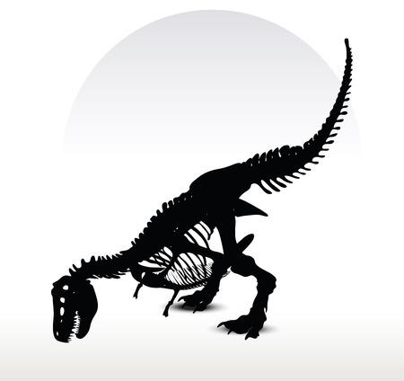 mesozoic: Vector Image - dinosaurs trex skeleton isolated on white background