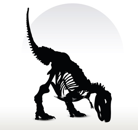 dinosaurus: Vector Image - dinosaurs trex skeleton isolated on white background