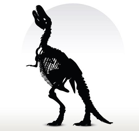trex: Vector Image - dinosaurs trex skeleton isolated on white background