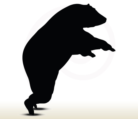 backlit: animal bear silhouette on white background Illustration