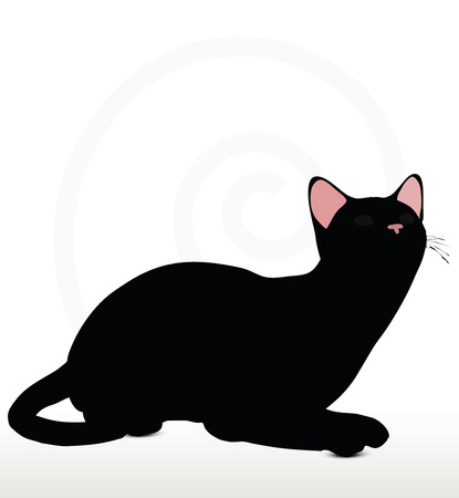 felid: Vector Image - cat silhouette in Sitting pose isolated on white background Illustration
