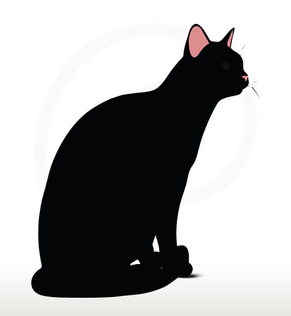 cat silhouette: Vector Image - cat silhouette in Sitting pose isolated on white background Illustration