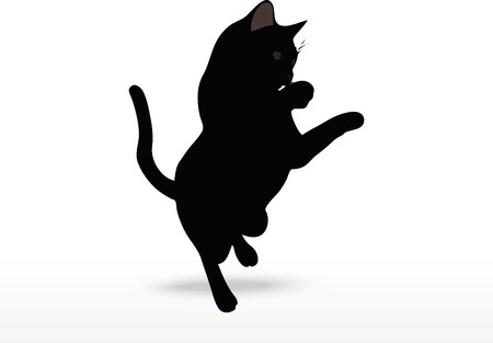 felid: cat silhouette in Reach pose isolated on white background