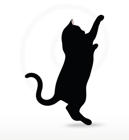 reach: cat silhouette in Reach pose isolated on white background