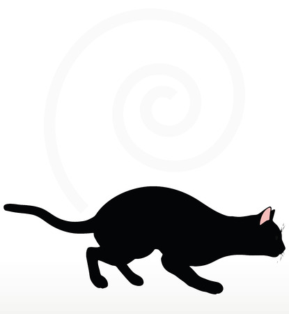 stalking: cat silhouette in Stalking pose isolated on white background Illustration