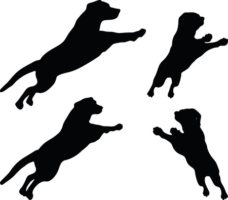 devanear: Vector Image - dog silhouette in default pose isolated on white background