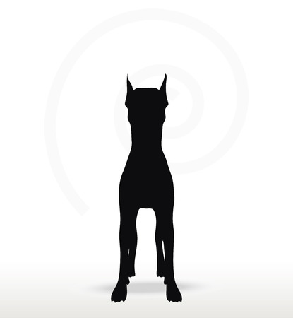 cur: Vector Image - dog silhouette in still pose isolated on white background