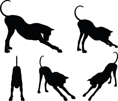 devanear: Imagem vetorial - silhueta do cão no trecho pose isolado no fundo branco