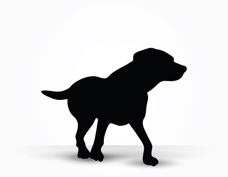 stray: Vector Image - dog silhouette in default pose isolated on white background
