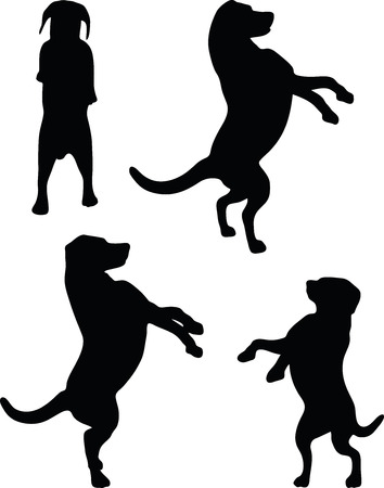 mongrel: Vector Image - dog silhouette in default pose isolated on white background