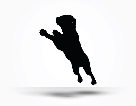 dog white background: Vector Image - dog silhouette in default pose isolated on white background