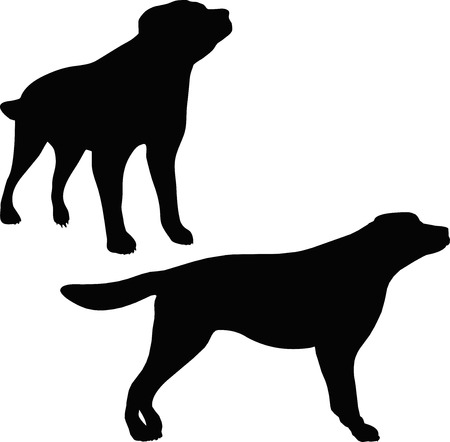 mongrel: Vector Image - dog silhouette isolated on white background