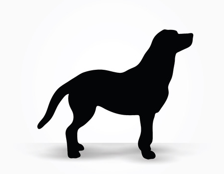 animal silhouette: Vector Image - dog silhouette in default pose isolated on white background