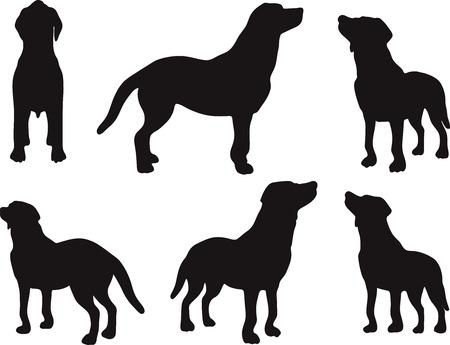 ベクトル画像 - 犬シルエット デフォルトのポーズに孤立した白い背景