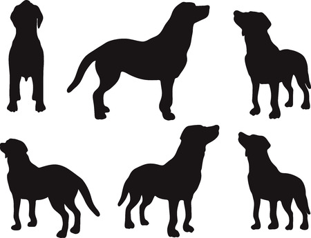 dog pose: Vector Image - dog silhouette in default pose isolated on white background
