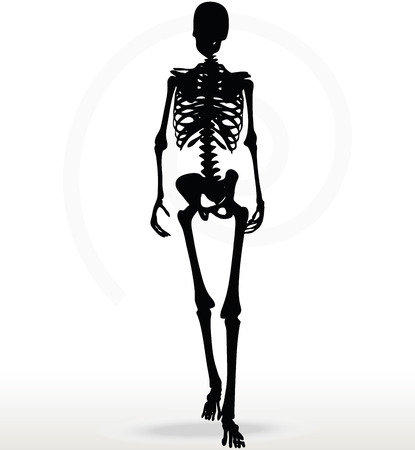 gait: Vector Image - skeleton silhouette in walk pose isolated on white background