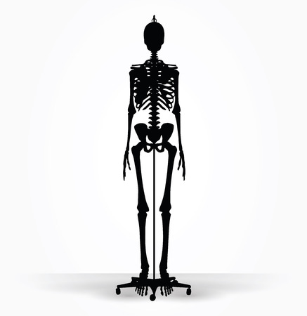 default: Vector Image - skeleton silhouette in default pose isolated on white background