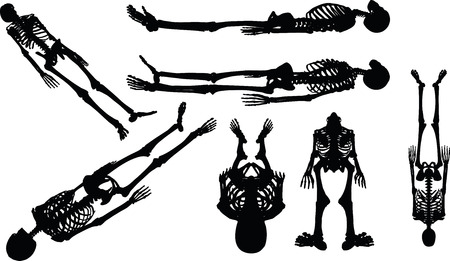 Vector Image - skeleton silhouette in supine pose isolated on white background Illustration