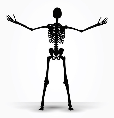 potency: Vector Image - skeleton silhouette in power pose isolated on white background
