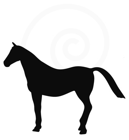 Vector Image - horse silhouette isolated on white background