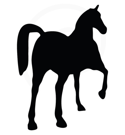 show horse: Vector Image - horse silhouette in show horse pose isolated on white background Illustration