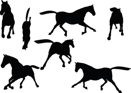 scamper: Vector Image - horse silhouette in fast trot pose isolated on white background