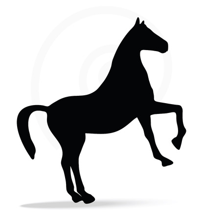 gee: Vector Image - horse silhouette in show horse pose isolated on white background Illustration
