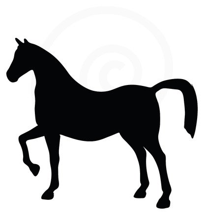 gee: Vector Image - horse silhouette isolated on white background