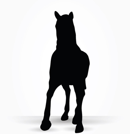 parade: Vector Image - horse silhouette in parade walk pose isolated on white background