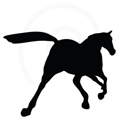 trotting: Vector Image - horse silhouette in fast trot pose isolated on white background