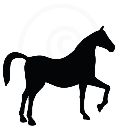 horse and cart: Vector Image - horse silhouette isolated on white background