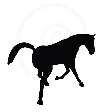 gee: Vector Image - horse silhouette in looking good pose isolated on white background