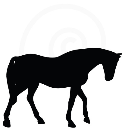 gait: Vector Image - horse silhouette in walking head down pose isolated on white background Illustration