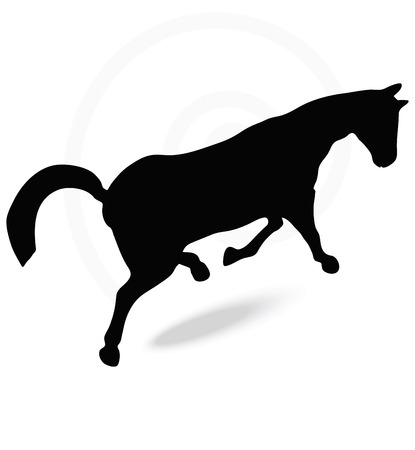 springy: Vector Image - horse silhouette in prancing walk pose isolated on white background