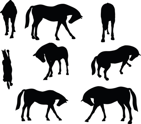 gee: Vector Image - horse silhouette in standing around pose isolated on white background