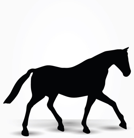 walk in: Vector Image - horse silhouette in parade walk pose isolated on white background